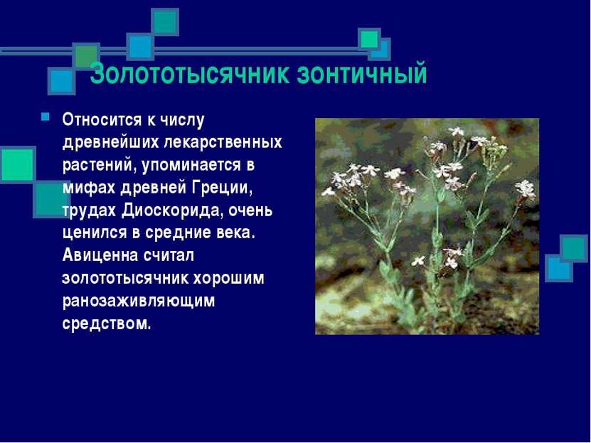 Золототысячник зонтичный Относится к числу древнейших лекарственных растений,...
