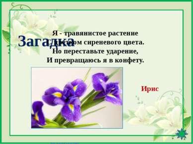 Интернет-ресурсы http://pedsovet.su/load/391-1-0-41601 - Шаблон «8 Марта» (цв...