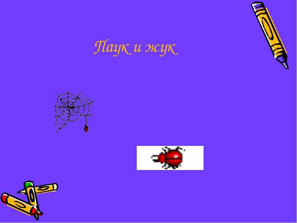 Паук и жук