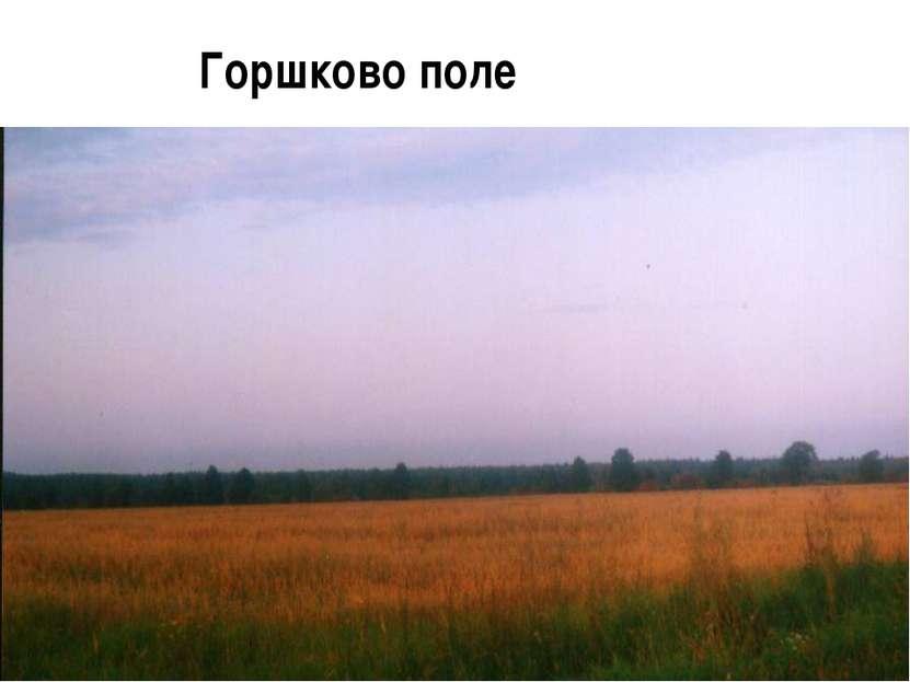 Горшково поле
