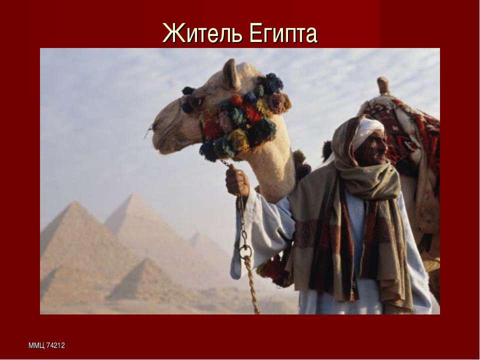 ММЦ 74212 Житель Египта