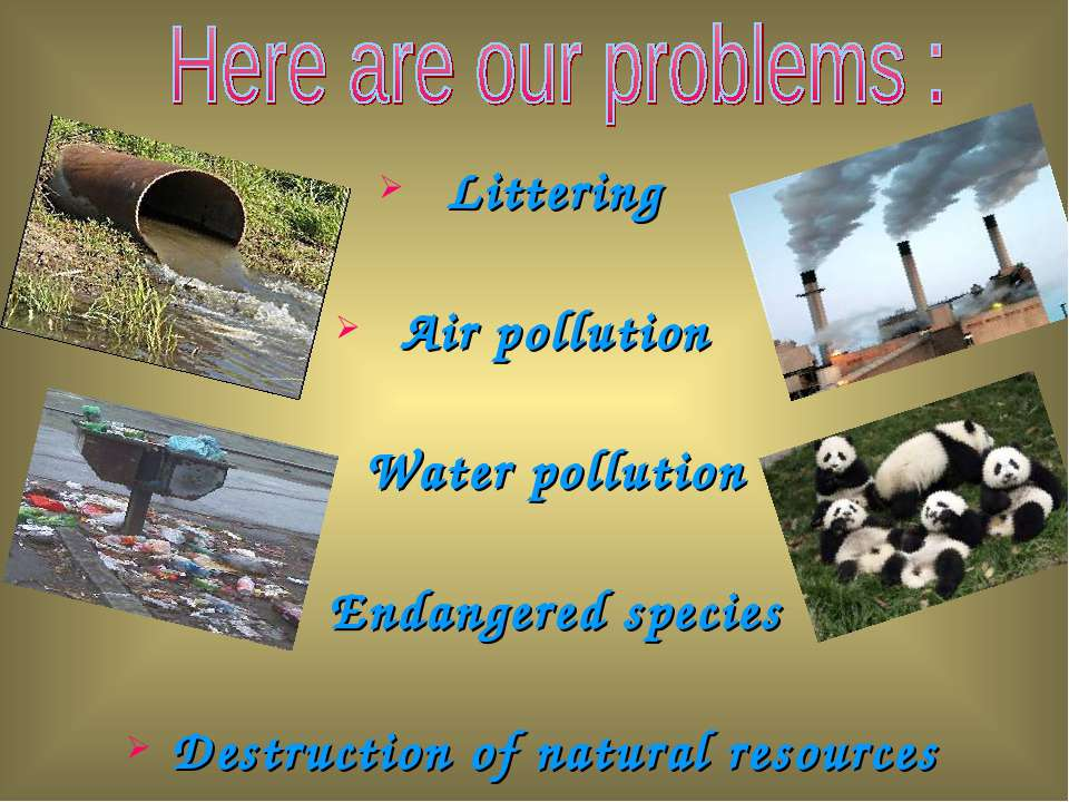 Littering Air pollution Water pollution Endangered species Destruction of nat...