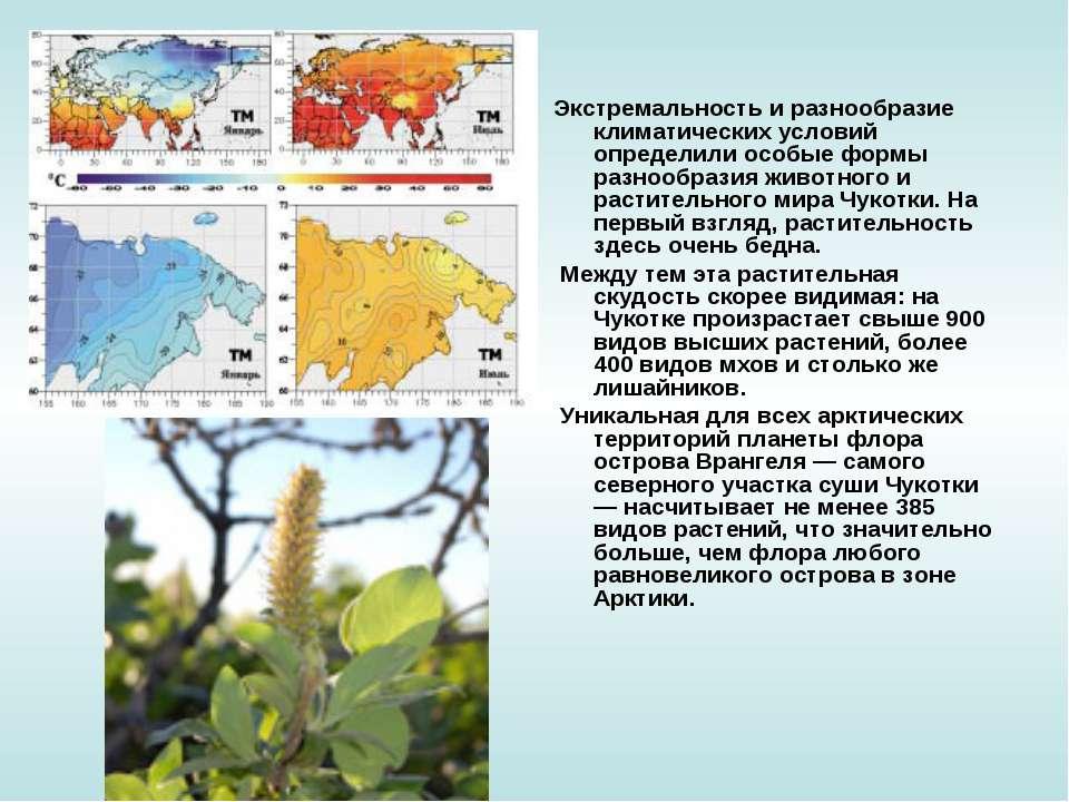 Экстремальность и разнообразие климатических условий определили особые формы ...