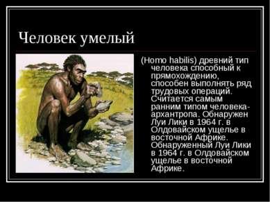 Человек умелый (Homo habilis) древний тип человека способный к прямохождению,...