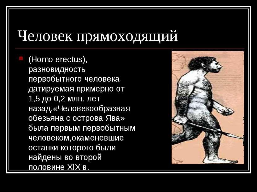 Человек прямоходящий (Homo erectus), разновидность первобытного человека дати...