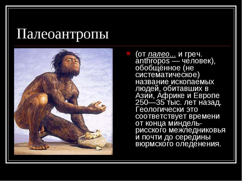Палеоантропы (от палео... и греч. anthropos — человек), обобщённое (не систем...