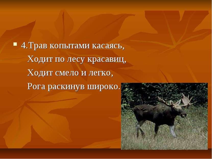 4.Трав копытами касаясь, Ходит по лесу красавиц, Ходит смело и легко, Рога ра...