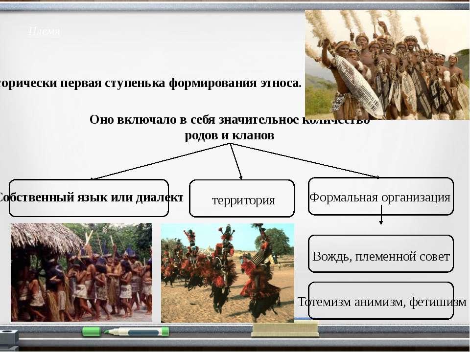 Племя Исторически первая ступенька формирования этноса. Оно включало в себя з...