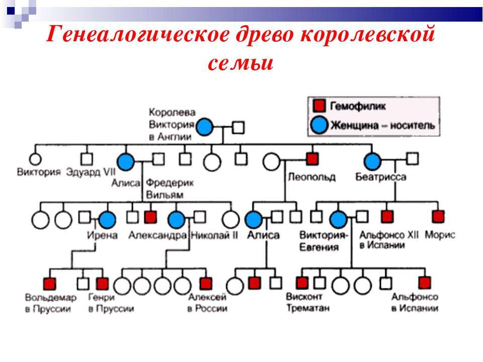 Генеалогическое древо королевской семьи