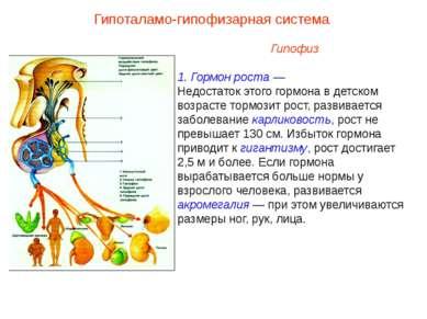 Гипофиз 1. Гормон роста — Недостаток этого гормона в детском возрасте тормози...