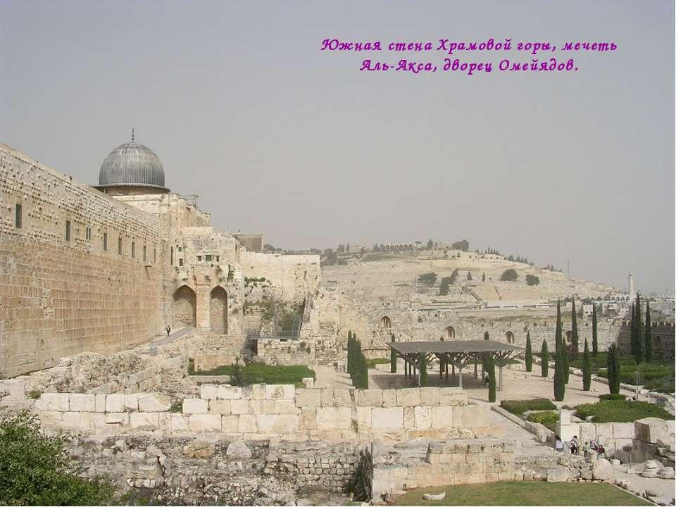 Южная стена Храмовой горы, мечеть Аль-Акса, дворец Омейядов.