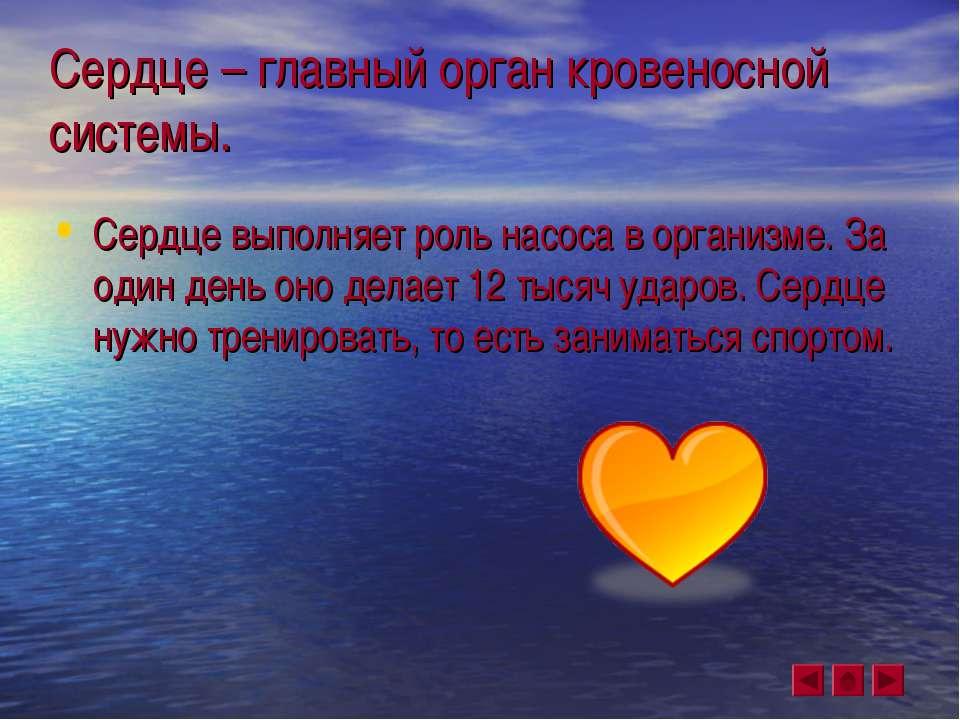 Сердце – главный орган кровеносной системы. Сердце выполняет роль насоса в ор...
