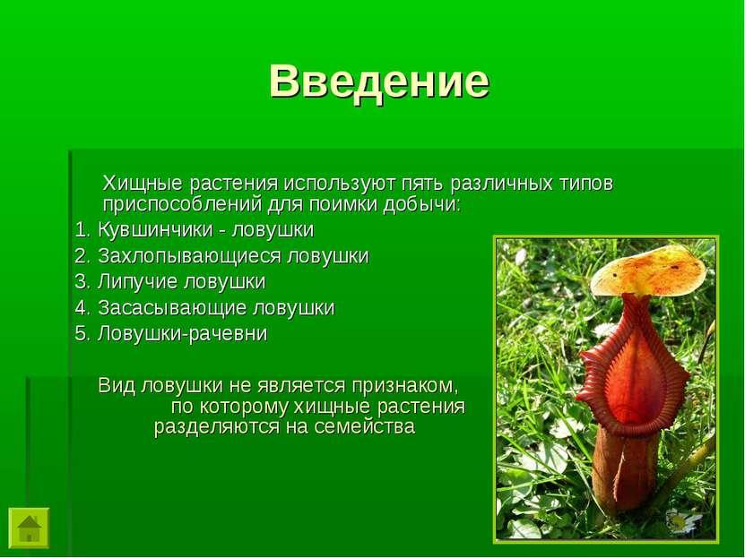 Хищные растения используют пять различных типов приспособлений для поимки доб...