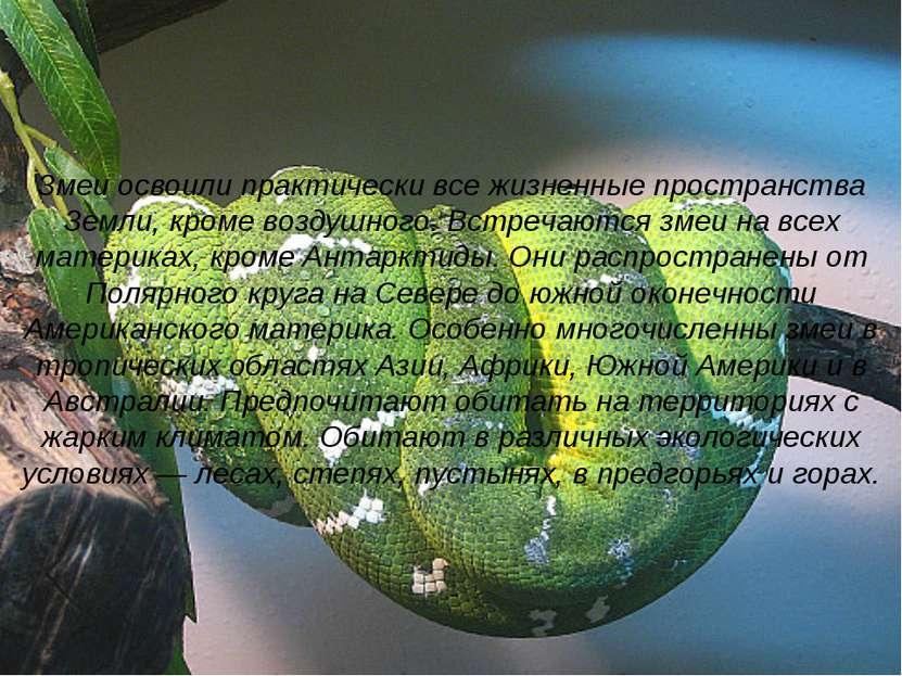 Змеи освоили практически все жизненные пространства Земли, кроме воздушного. ...