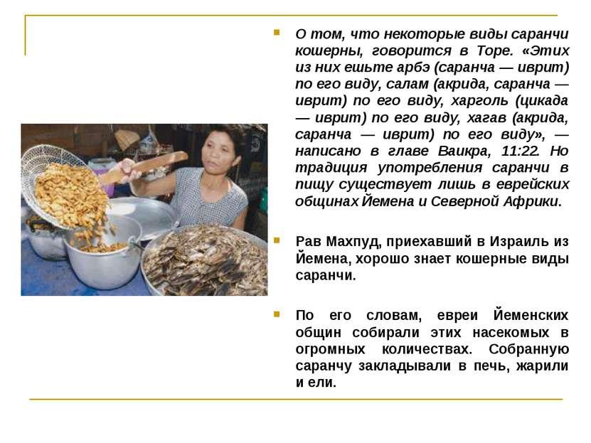 О том, что некоторые виды саранчи кошерны, говорится в Торе. «Этих из них ешь...