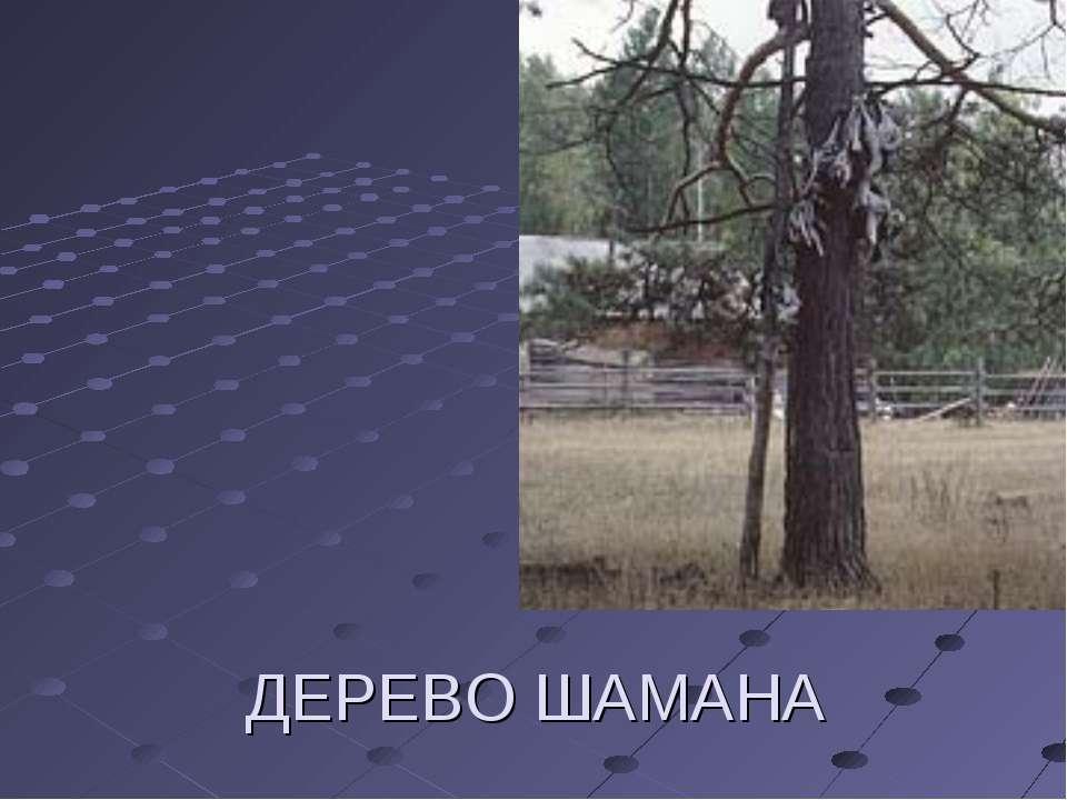 ДЕРЕВО ШАМАНА