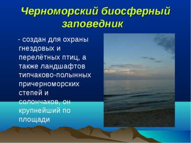 Черноморский биосферный заповедник - создан для охраны гнездовых и перелётны...