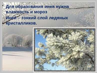 Для образования инея нужна влажность и мороз Иней – тонкий слой ледяных крист...