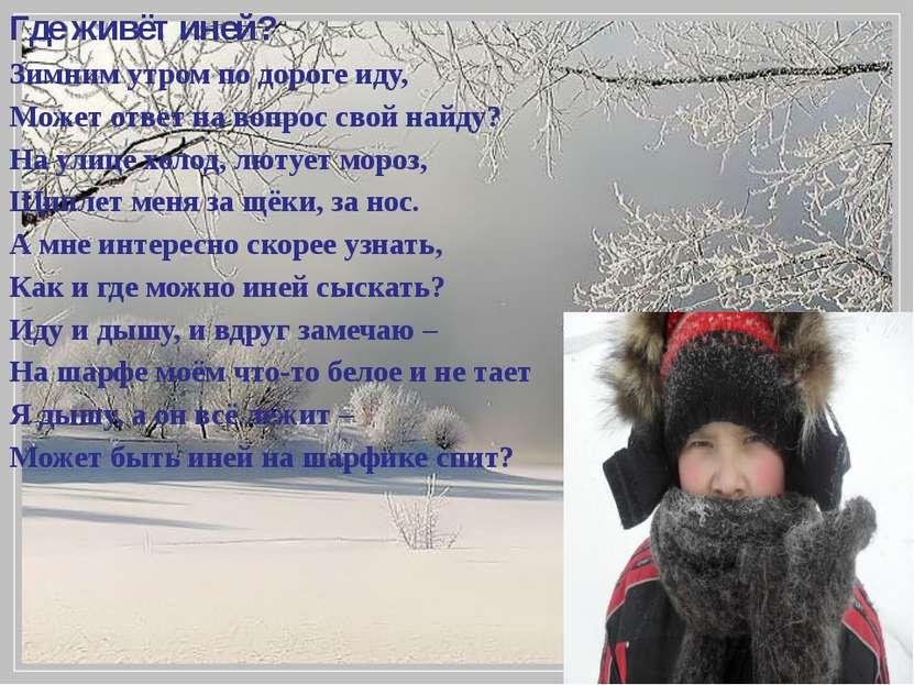Где живёт иней? Зимним утром по дороге иду, Может ответ на вопрос свой найду?...