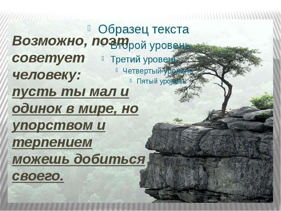 Возможно, поэт советует человеку: пусть ты мал и одинок в мире, но упорством ...