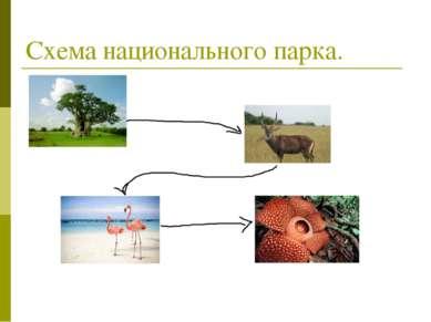Схема национального парка.