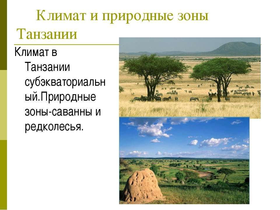Климат и природные зоны Танзании Климат в Танзании субэкваториальный.Природны...