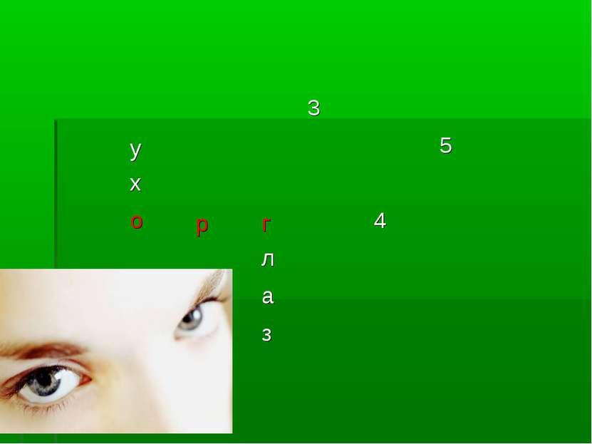 3 у 5 х о р г 4 л а з