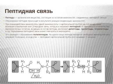 Пептидная связь Пептиды — органические вещества, состоящие из остатков аминок...
