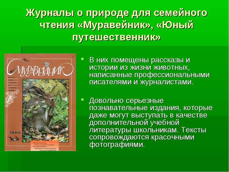 Журналы о природе для семейного чтения «Муравейник», «Юный путешественник» В ...