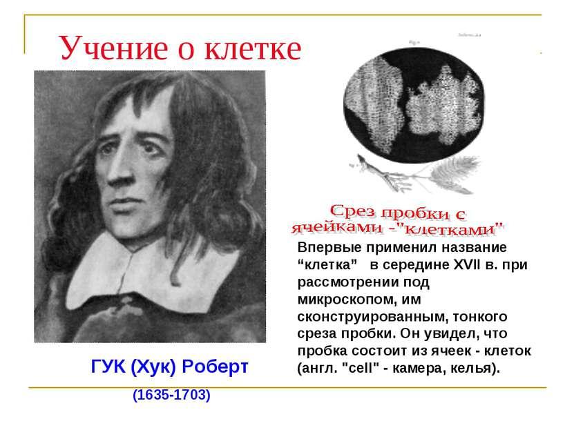 ГУК (Хук) Роберт (1635-1703) Учение о клетке
