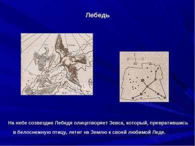 Лебедь На небе созвездие Лебедя олицетворяет Зевса, который, превратившись в...