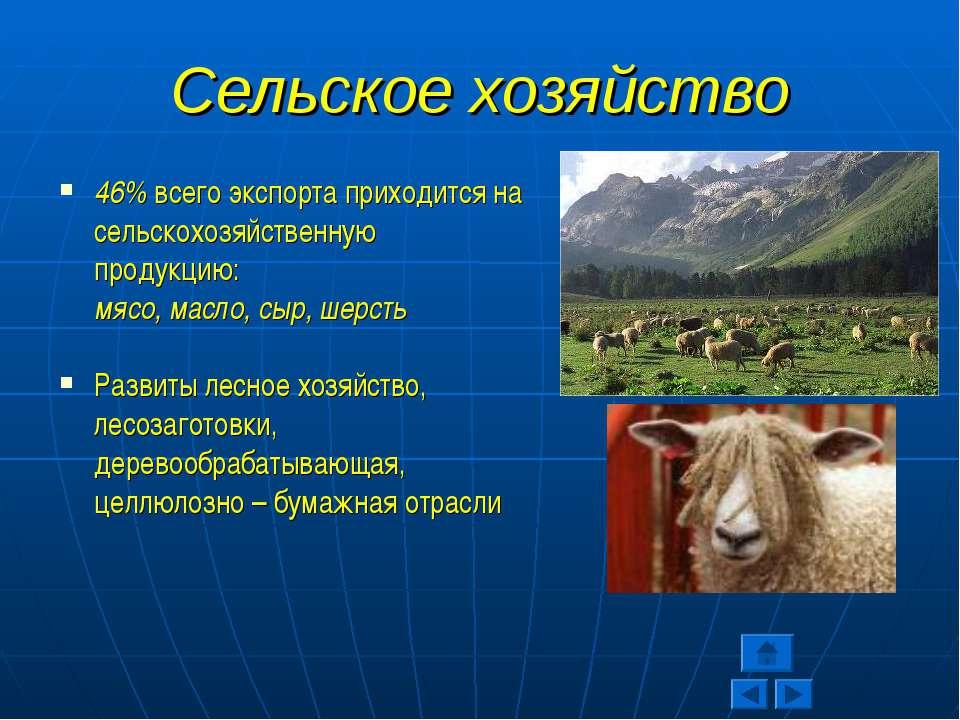 Сельское хозяйство 46% всего экспорта приходится на сельскохозяйственную прод...