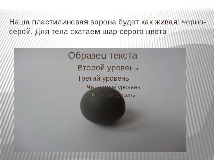 Наша пластилиновая ворона будет как живая: черно-серой. Для тела скатаем шар ...