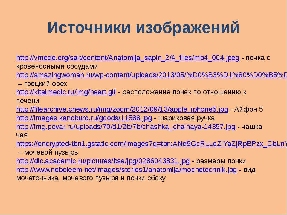 Источники изображений http://vmede.org/sait/content/Anatomija_sapin_2/4_files...