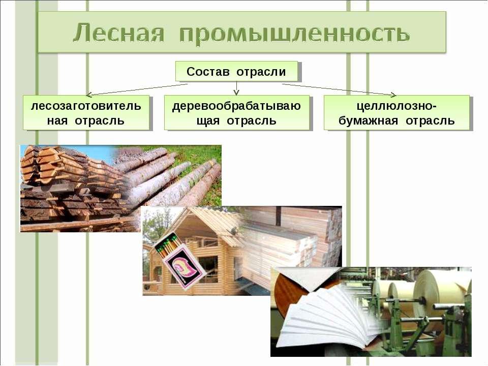 Состав отрасли деревообрабатывающая отрасль лесозаготовительная отрасль целлю...