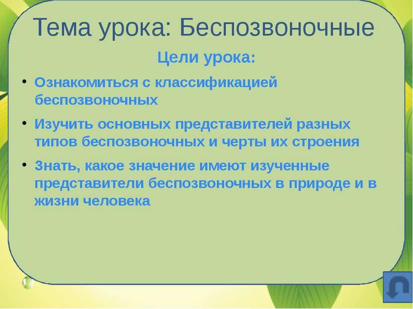 Тема урока: Беспозвоночные Цели урока: Ознакомиться с классификацией беспозво...