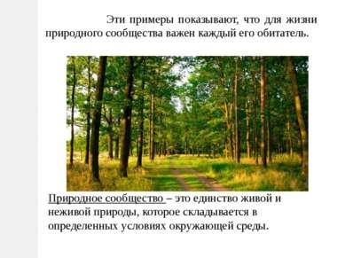 Эти примеры показывают, что для жизни природного сообщества важен каждый его ...