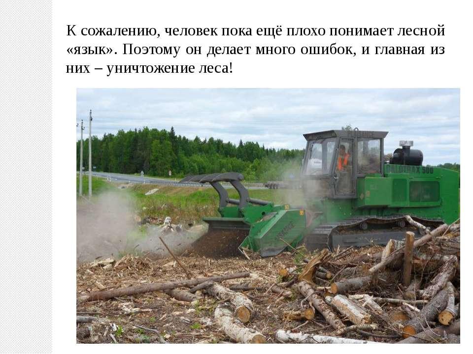 К сожалению, человек пока ещё плохо понимает лесной «язык». Поэтому он делает...