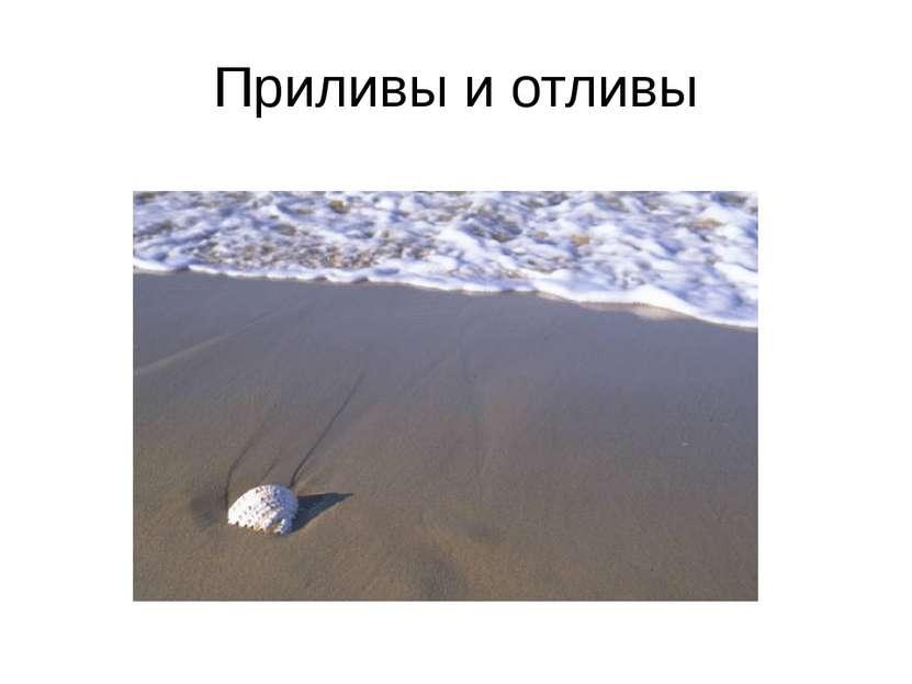 Приливы и отливы Презентацию подготовила учитель географии МБОУ Светловская С...