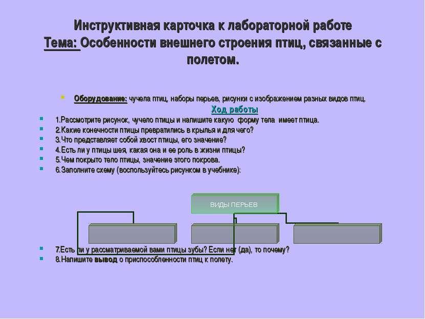 Инструктивная карточка к лабораторной работе Тема: Особенности внешнего строе...