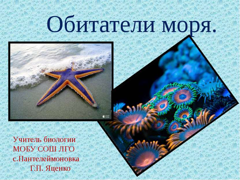 Обитатели моря. Учитель биологии МОБУ СОШ ЛГО с.Пантелеймоновка Г.П. Яценко