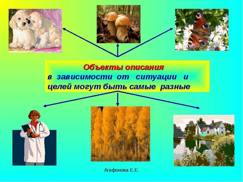 Агафонова Е.Е. Объекты описания в зависимости от ситуации и целей могут быть ...