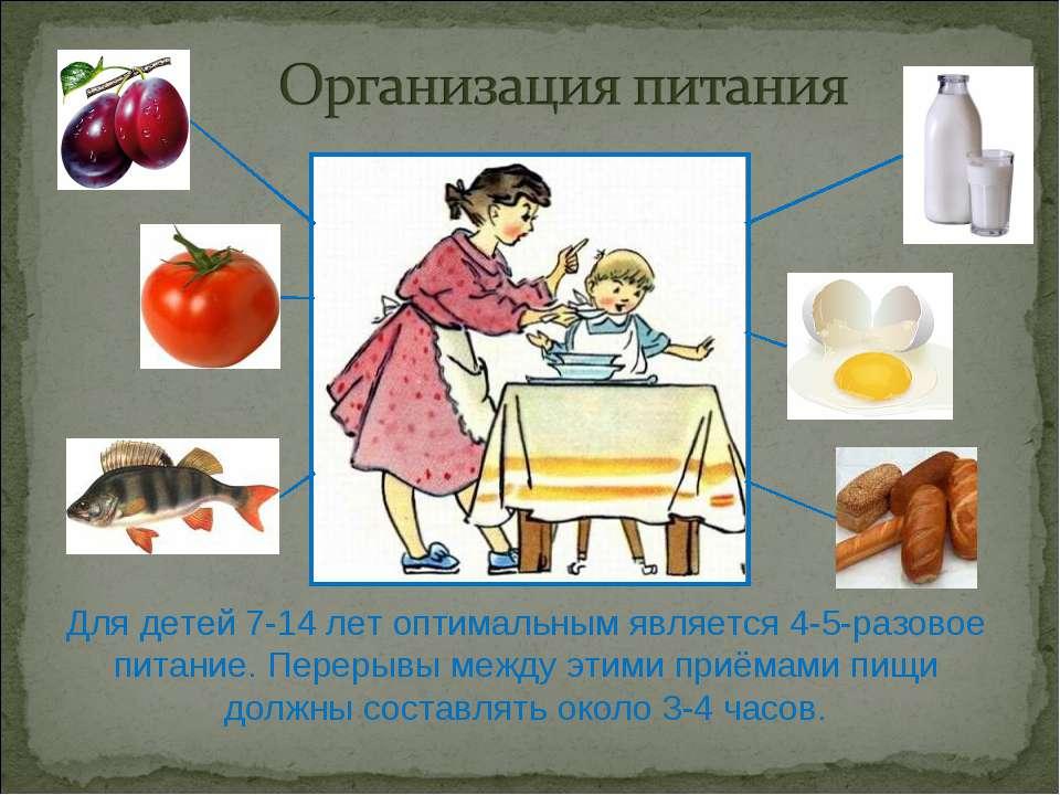 Для детей 7-14 лет оптимальным является 4-5-разовое питание. Перерывы между э...