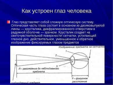 Как устроен глаз человека Глаз представляет собой сложную оптическую систему....