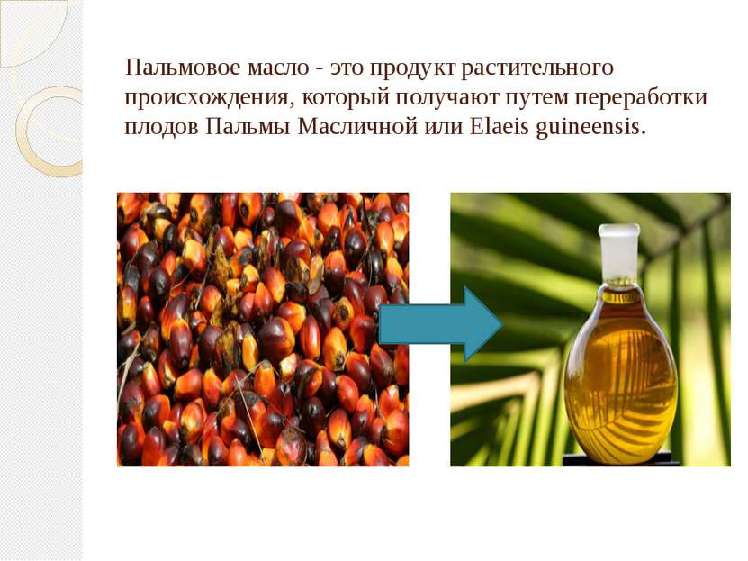Пальмовое масло - это продукт растительного происхождения, который получают п...