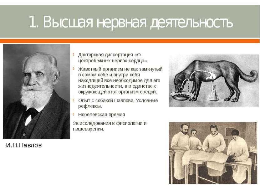 1. Высшая нервная деятельность Докторская диссертация «О центробежных нервах ...