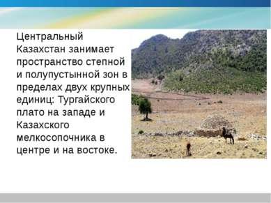 Центральный Казахстан занимает пространство степной и полупустынной зон в пре...