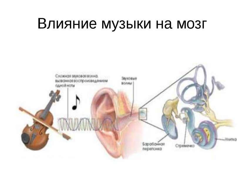 Влияние музыки на мозг