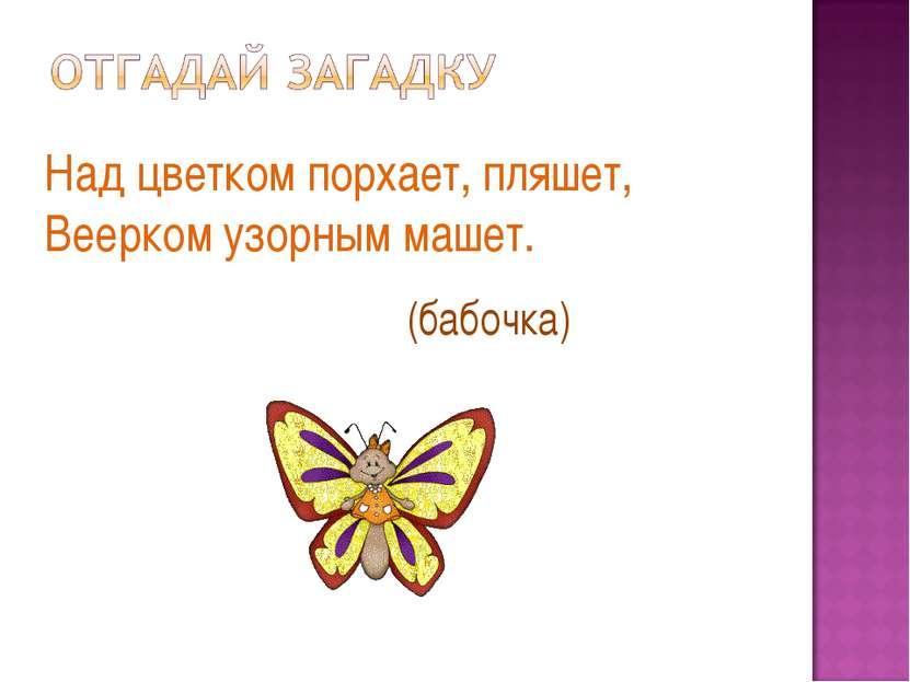 Над цветком порхает, пляшет, Веерком узорным машет. (бабочка)