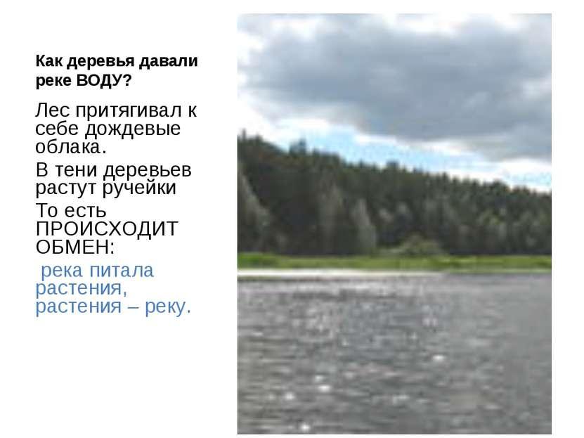 Как деревья давали реке ВОДУ? Лес притягивал к себе дождевые облака. В тени д...